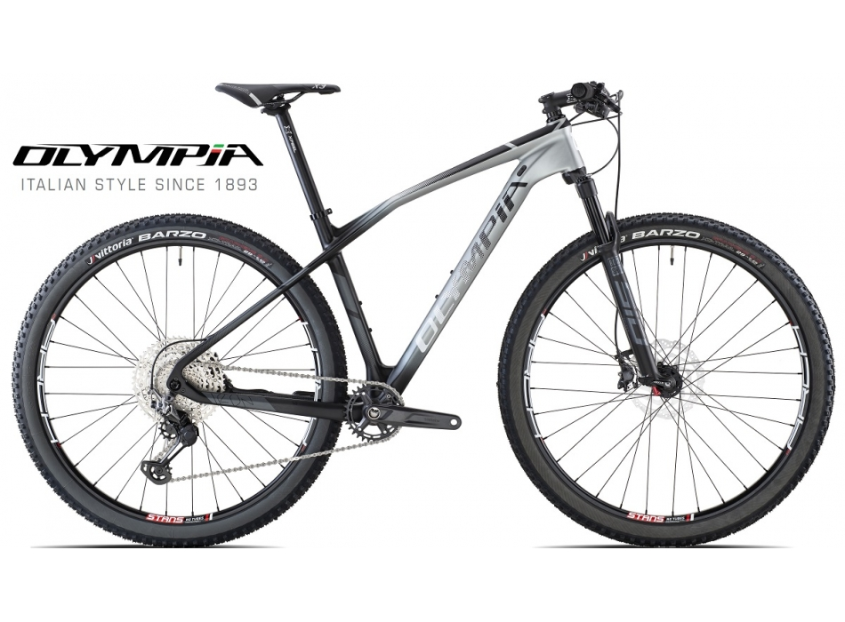 IRON 29 TEAM 2S DISC ROCK SHOX SID SL SELECT GAMMA 2021